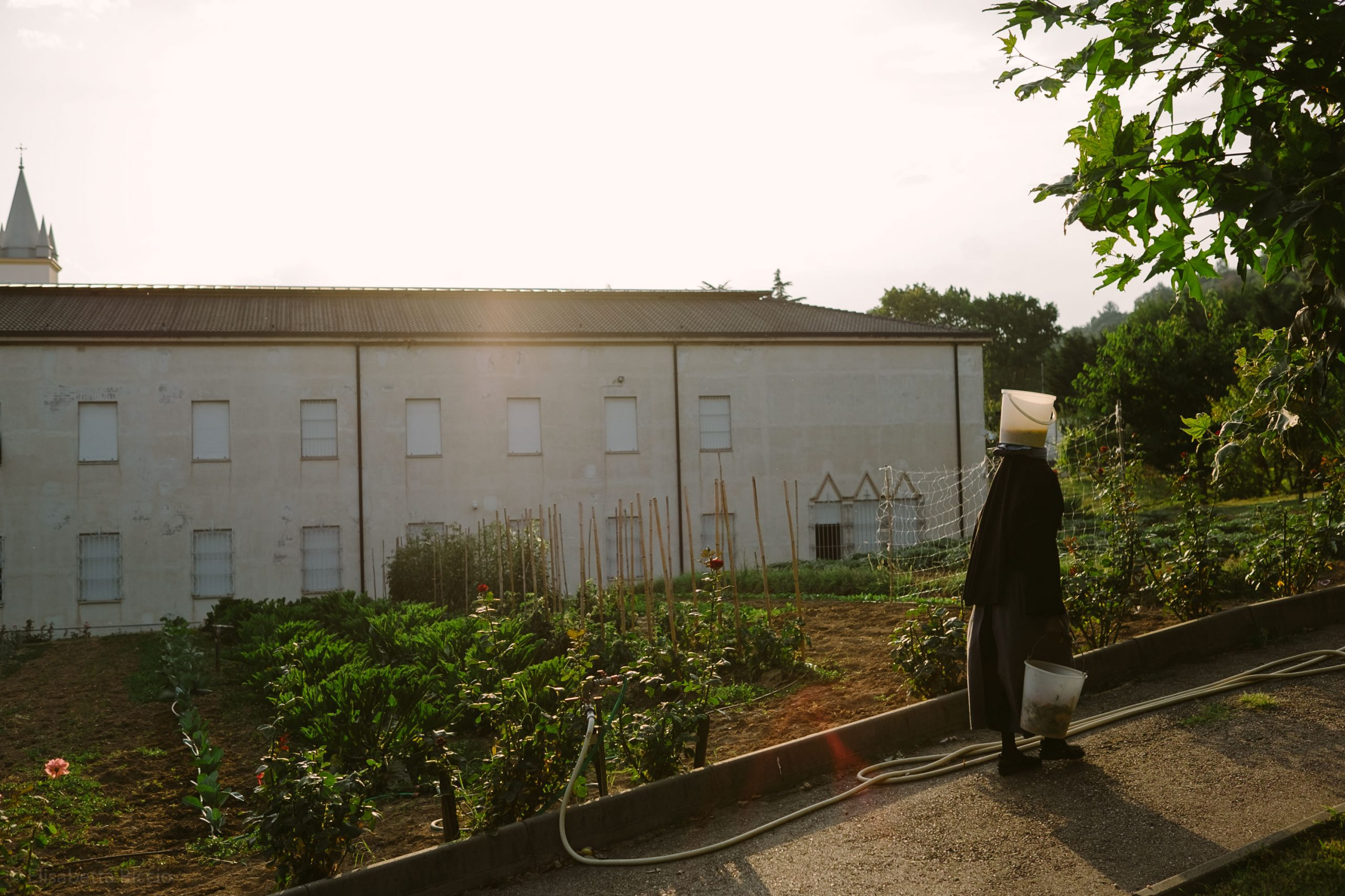 elisabetta riccio - from the clausus project, a nun while working walks at sunset and brings food to the animals